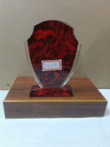 Award plaque TY107
