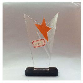 F101 ACRYLIC AWARD