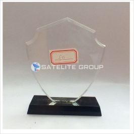 F11 ACRYLIC AWARD