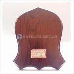a10-2 wood award