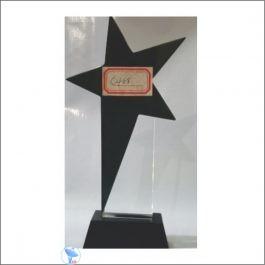 c488-b glass award