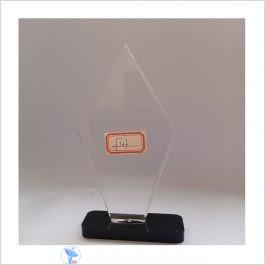 f14 acrylic award