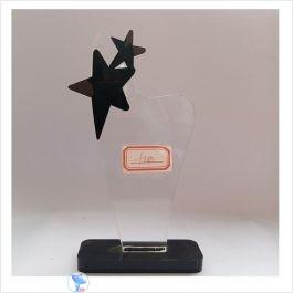 f180 acrylic award