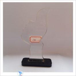 f48 acrylic award